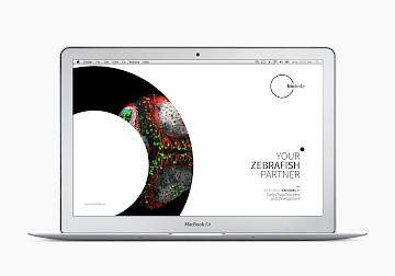 web 10 branding move biobide design digital