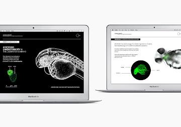 digital web 11 move branding biobide design