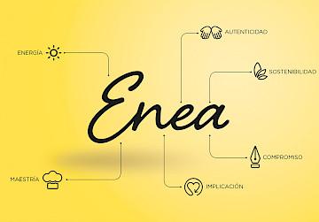 website enea move logo identity consultancy 07 branding