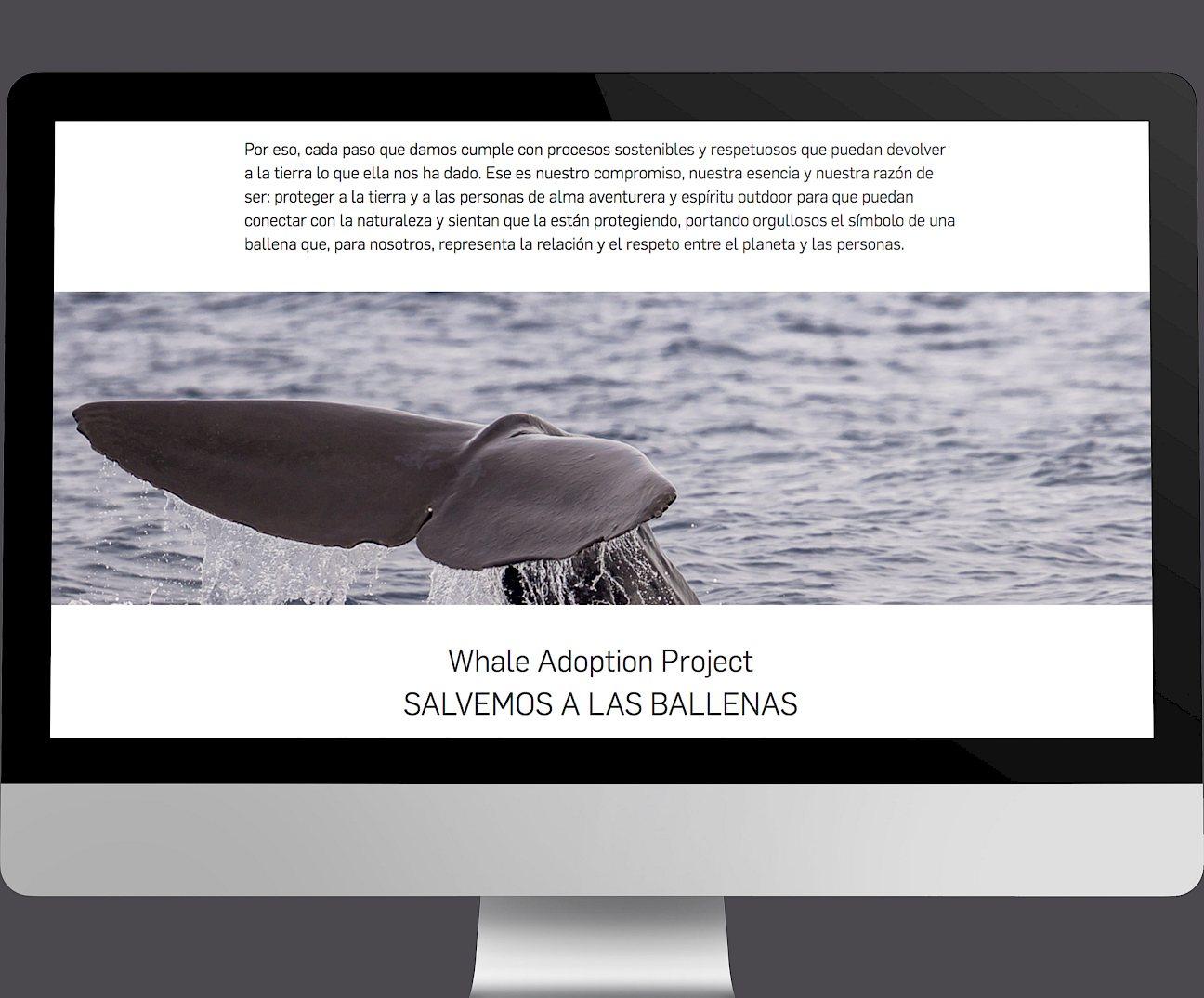 digital wireframe design 07 website ternua branding move