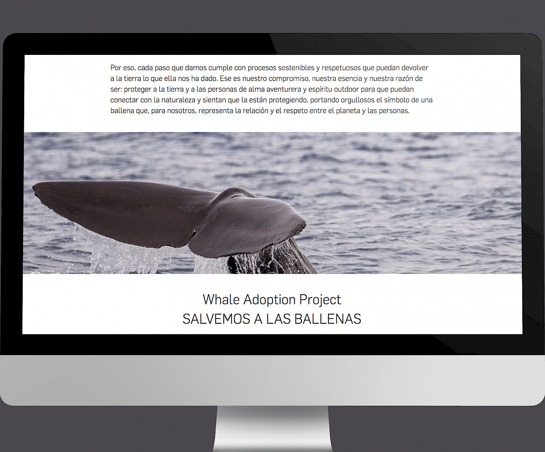 branding digital ternua website wireframe 07 design move